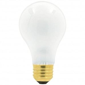 60 Watt Incandescent Bulb