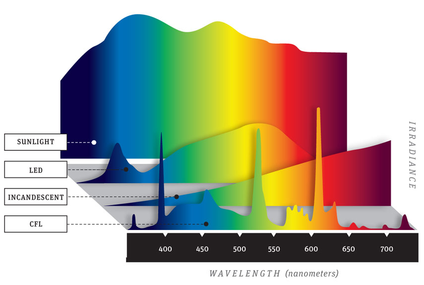 Light Bulbs and Color Spectrum