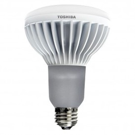 BR30 LED LightBulb
