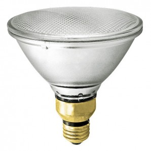 PAR Halogen Lamp