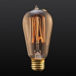 Squirrel Cage Filament Edison Bulb